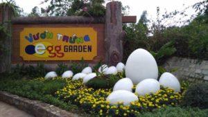 грязелечебница 100 яиц в нячанге
