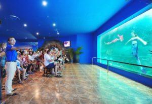 аквариум в парке винперл
