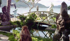 экскурсия на остров обезьян
