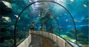 Океанариум в Анталье в Турции
