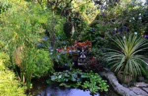ботанический сад фитофантазия в сочи
