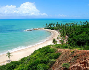Отдых в Суринам