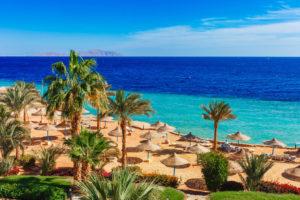 Какой курорт выбрать в Египте